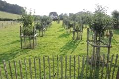 b-c-orchard